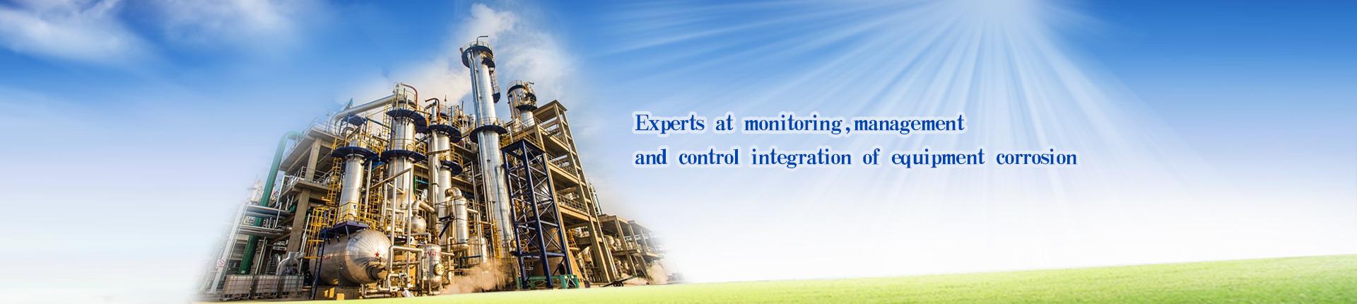 The corrosion monitoring probe